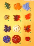 昆虫や葉っぱのリアリステックボタン