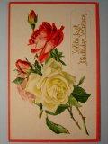 バラのポストカード 1930s 未使用