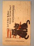 可愛い猫のポストカード 1907年