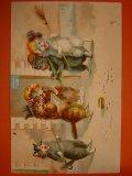 アンティーク 猫のポストカード 1904年