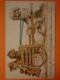アンティーク 猫と犬のポストカード 1901年